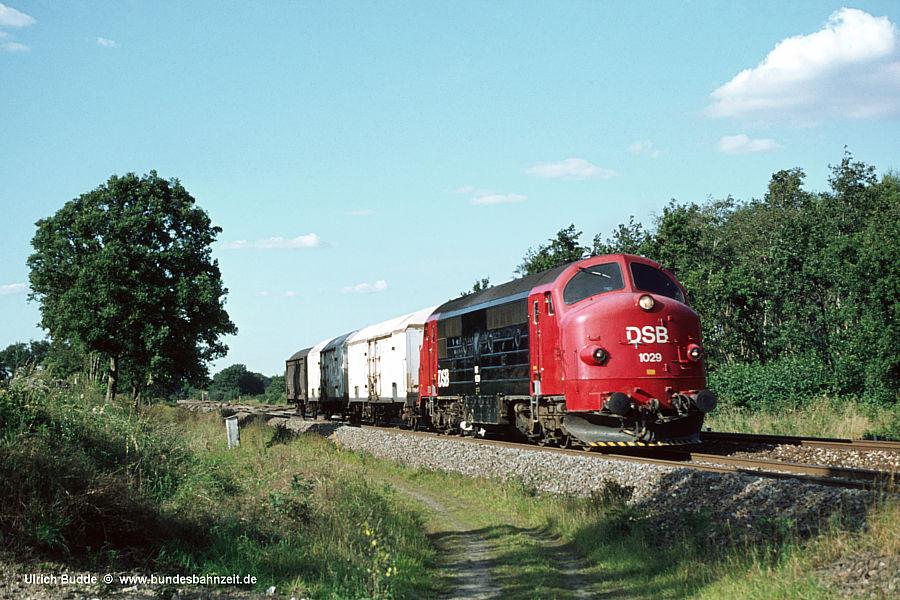 http://www.bundesbahnzeit.de/dso/Daenemark81/b16-MX_1029.jpg